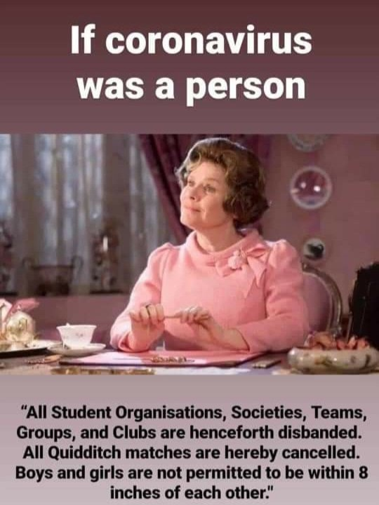 if-corona-virus-was-a-person-professor-umbridge-harry-potter-meme